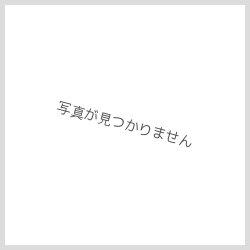 画像3: 廣政毅:ルリフラワーレリーフ皿